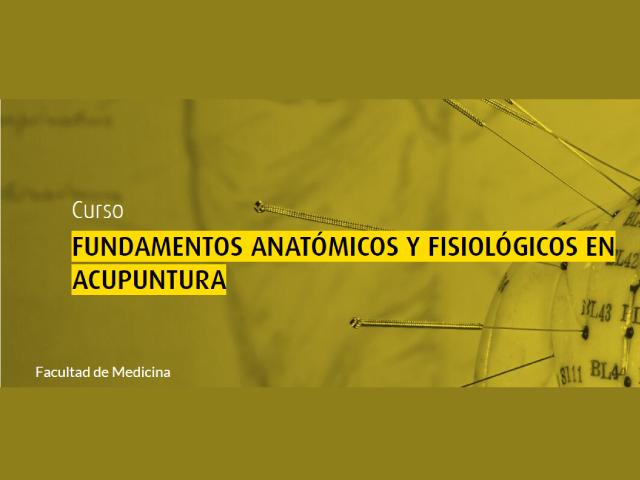 Fundamentos Anatómicos y Fisiológicos en Acupuntura