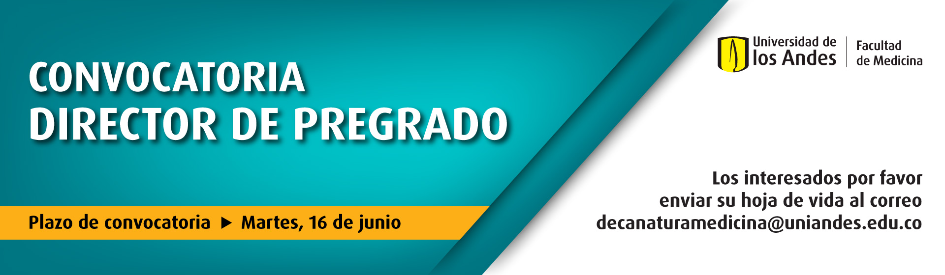 Convocatoria Director de Pregrado