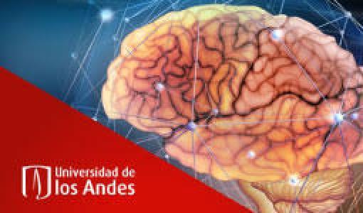 VI Semana del Cerebro